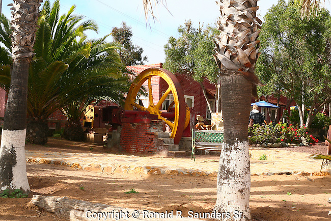 Located in San Quintin, Baja California,about 200 miles south of the international border at the headwaters of San Quintin Bay. The Old Mill is named for the wheat mill established by the English colonists around the turn of the 19th century. Many pieces of the original machinery still remain on the premises. A long drought forced the English to abandon the mill. Then in the late 1940's, the Mexican Government established a cannery at the location where tuna, sardines, and mackerel were canned until the early 1970's.<br /> (2)