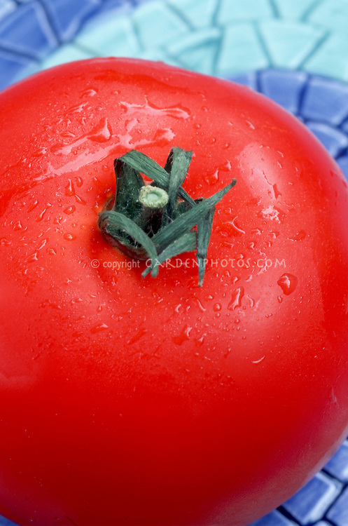 Tomato, red, lucious, fresh, just picked, on plate ready to eat