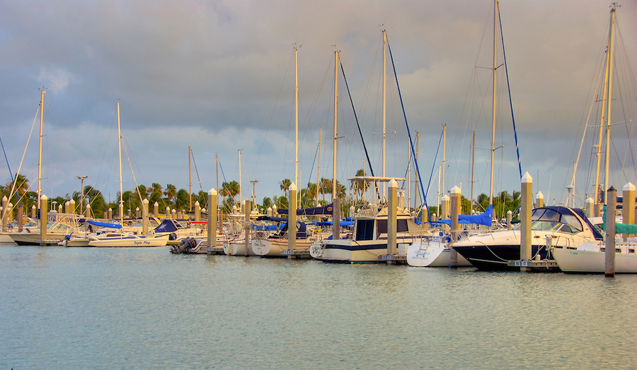 Viiew of Crandon Park Marina in Key Biscayne Island in Miami, Florida. Key Biscayne is a popular tourist destination in the Miami area.