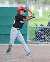 PNLL AAA Marlins Photo Day 2015. (Photo by AGP Photography)