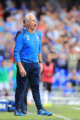 26th August 2017, Portman Road, Ipswich, England; EFL Championship football, Ipswich versus Fulham; Ipswich Town Manager Mick McCarthy shouts at his players