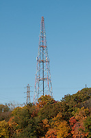 Communication tower in the forest