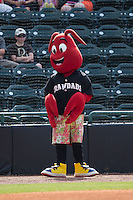 """Hickory Crawdads mascot """"Conrad"""" prior to the game against the Savannah Sand Gnats at L.P. Frans Stadium on June 14, 2015 in Hickory, North Carolina.  The Crawdads defeated the Sand Gnats 8-1.  (Brian Westerholt/Four Seam Images)"""