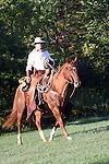 A cowboy riding horseback