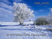 Marek, CHRISTMAS LANDSCAPES, WEIHNACHTEN WINTERLANDSCHAFTEN, NAVIDAD PAISAJES DE INVIERNO, photos+++++,PLMP0478Z,#xl#