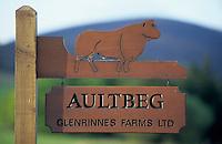 Europe/Grande-Bretagne/Ecosse/Moray/Speyside/Env de Dufftown : Panneau représentant un boeuf de race Aberdeen Angus dans une ferme d'élevage