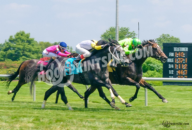 Bishop's Castle winning at Delaware Park on 7/11/15