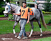 Dhaan before The Dr. Sam Harrison Juvenile Arabian Filly Stakes (gr 2) at Delaware Park on 8/5/13