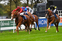 Winner of The Bathwickcarandvanhire.co.uk Handicap,Poseidon ridden by Liam keniry and trained by Ed Walker   during Bathwick Tyres Reduced Admission Race Day at Salisbury Racecourse on 9th October 2017