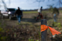 A survey stake with orange tape marks a work location as volunteers clear honeysuckle and other invasive plants from Otterbein Lake in Westerville, Ohio, on a cold winter morning. The once abandoned lake was used as a holding pond for industry.  Photo Copyright Gary Gardiner. Not for reproduction without written permission.