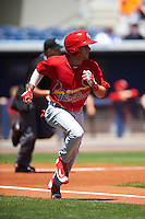 Palm Beach Cardinals shortstop Mikey Reynolds (4) runs to first during a game against the Charlotte Stone Crabs on April 10, 2016 at Charlotte Sports Park in Port Charlotte, Florida.  Palm Beach defeated Charlotte 4-1.  (Mike Janes/Four Seam Images)