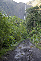Dirt road in Waipio Valley on the Big Island of Hawaii