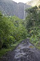 Dirt road in Waipio Valley on the Big Island of Hawaii