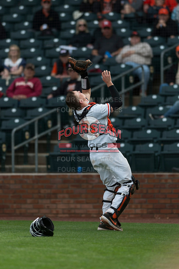Oregon State Beavers catcher Adley Rutschman (35) prepares to catch a pop fly in foul territory during a game against the New Mexico Lobos on February 15, 2019 at Surprise Stadium in Surprise, Arizona. Oregon State defeated New Mexico 6-5. (Zachary Lucy/Four Seam Images via AP)