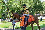 July 24,2020:Luis Saez on Movie Score on Quick Call day at Saratoga Race Course in Saratoga Springs, New York. Rob Simmons/Eclipse Sportswire/CSM