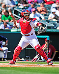 10 March 2010: St. Louis Cardinals' catcher Yadier Molina in action during a Spring Training game against the Washington Nationals at Roger Dean Stadium in Jupiter, Florida. The Cardinals defeated the Nationals 6-4 in Grapefruit League action. Mandatory Credit: Ed Wolfstein Photo