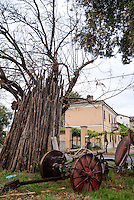 Un aratro e dei bastoni di legno appoggiati a un albero in un campo di un paese vicino a Broni (Pavia) --- A plow and wooden sticks leaning against a tree in a field in a small village near Broni (Pavia)