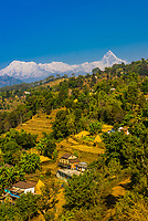 Annapurna South, Annapurna 1, Hiunchuli and Machapuchare (Fishtail), peaks of the Annapurna Massif of the Himalayas, seen from Lekhnath, Nepal.