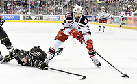 Grand Rapids Griffins at Hershey Bears - AHL Hockey  1-5-19