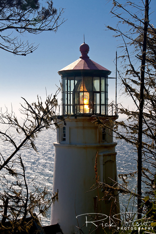 The Haceta Head Lighthouse is located on Oregon's Coast north of Florence. The tower is 56 feet tall and has a focal plane 205 feet above sea level. The light, which first shown on March 30, 1894, can be seen 21 miles out to see and is only stoped by the curvature of the earth.