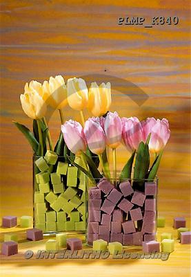 Marek, FLOWERS, BLUMEN, FLORES, photos+++++,PLMPK840,#f#
