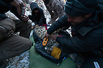 Snow Leopard (Panthera uncia) biologist, Shannon Kachel, reading PIT tag during collaring of male snow leopard, with veterinarian, Ric Berlinski, biologist, Rahim Kulenbek, and ranger, Urmat Solokov, Sarychat-Ertash Strict Nature Reserve, Tien Shan Mountains, eastern Kyrgyzstan