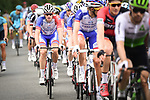 The peloton including Arnaud Demare (FRA) Groupama-FDJ in action during Stage 7 of the 2018 Tour de France running 231km from Fougeres to Chartres, France. 13th July 2018. <br /> Picture: ASO/Pauline Ballet | Cyclefile<br /> All photos usage must carry mandatory copyright credit (&copy; Cyclefile | ASO/Pauline Ballet)