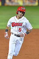 L.J. Kalawaia (5) of the Orem Owlz circles the bases after hitting a two run homer against the Billings Mustangs in Game 2 of the Pioneer League Championship at Home of the Owlz on September 16, 2016 in Orem, Utah. Orem defeated Billings 3-2 and are the 2016 Pioneer League Champions.(Stephen Smith/Four Seam Images)