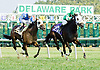Miss Pavarotti winning at Delaware Park on 9/17/12