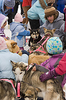 Nome school girls swarm Dee Dee Jonrowe's dogs with hugs on Wednesday in Nome after Dee finished in 15th position.