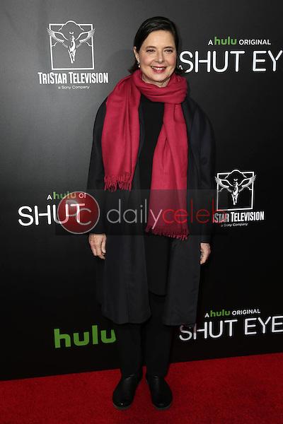 "Isabella Rossellini<br /> at the Premiere Of Hulu's ""Shut Eye,"" ArcLight, Hollywood, CA 12-01-16<br /> David Edwards/DailyCeleb.Com 818-249-4998"