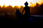 OCT 24: Scenes from morning works at Santa Anita Park in Arcadia, California on Oct 24, 2019. Evers/Eclipse Sportswire/Breeders' Cup