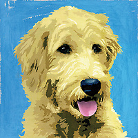 Painting of Wolfhound dog