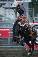Livingston Roundup and Rodeo — July 2,3 and 4, 2015