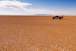 A man sits on the rear of a 2002 Toyota Tundra on the Alvord Desert drinking coffee in Harney County, Southeast Oregon.