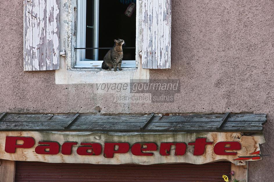 Europe/Europe/France/Midi-Pyrénées/46/Lot/Douelle: Chat à la fenêtre