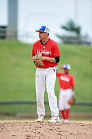 Paul Bergstrom (15) gets ready to deliver a pitch during during the Dominican Prospect League Elite Underclass International Series, powered by Baseball Factory, on July 21, 2018 at Schaumburg Boomers Stadium in Schaumburg, Illinois.  (Mike Janes/Four Seam Images)