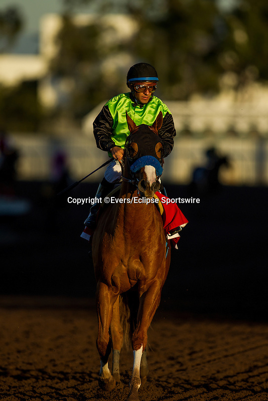 December 12, 2015:  Treasuring with Victor Espinoza up at the Starlet Stakes at Los Alamitos Race Track in Cypress California. Evers/ESW/CSM