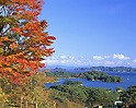 November 01, 2009: File photo showing Matsushima, Miyagi Prefecture, Japan taken in November 01, 2009. Matsushima was renowned for its natural beauty but  devasted by the massive magnitude 9.0 earthquake and subsequent tsunami that struck the eastern coast of Japan on Fraiday 11th March, 2011...