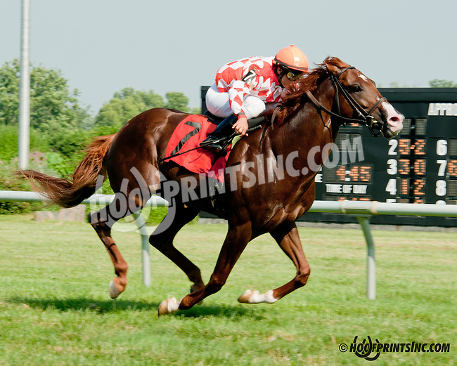Wicked Tune winning at Delaware Park on 7/15/13