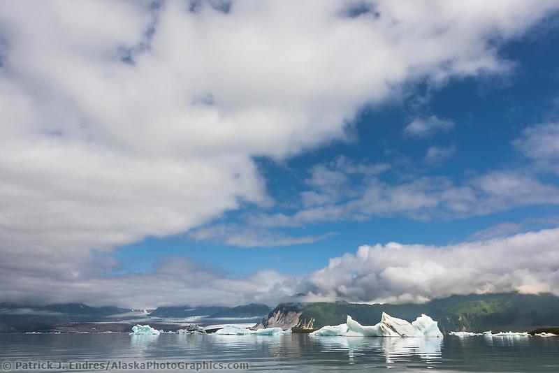 Icebergs in the Grand Plateau lake and glacier, Glacier Bay National Park, Southeast, Alaska