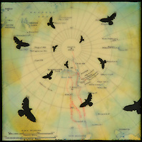Mixed media encaustic painting with photo transfer of birds over antique map of South Pole