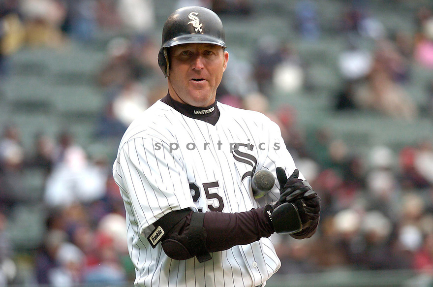 JIM THOME, of the Chicago White Sox, in action during their series against the Cleveland Indians in Chicago, IL....CHRIS BERNACCHI/ SPORTPICS..