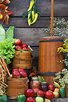 Harvest picture: Butter churn and antique buckets sit beside barn with fall harvest apples