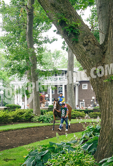 Satan's Mistress before The Dashing Beauty Stakes at Delaware Park on 7/9/16
