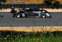 May 17, 2009:  A race car races past flowers at the Verizon Festival of Speed Grand-Am Rolex Series race at LMazda Raceway at Laguna Seca  in Salinas, CA. (Photo by Brian Cleary/www.bcpix.com)
