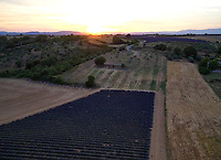 Aerial view of three apiaries in the lavender fields near Valensole. The production of lavender honey is estimated to be 1000 tons a year.<br /> Vue aérienne de trois ruchers dans les champs de lavandins près de Valensole. La production en miel de lavande s'estime autour 1000 tonnes par an.