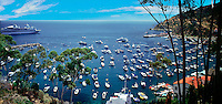 Santa Catalina, Island, Avalon Harbor, CGI Backgrounds, ,Beautiful Background