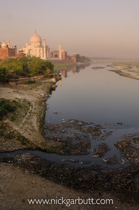 The Taj Mahal and the Yamuna River at sunrise. Agra, India.