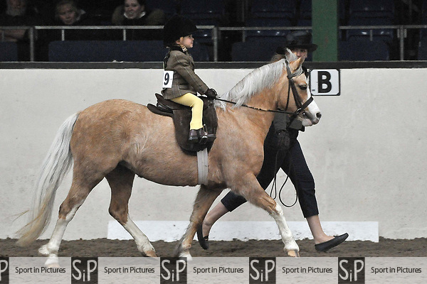Classes 7 to 11. Unaffiliated Showing. Brook Farm training centre. Stapleford abbots. Essex. 11/03/2018. ~ MANDATORY CREDIT Garry Bowden/SIPPA - NO UNAUTHORISED USE - +44 7837 394578